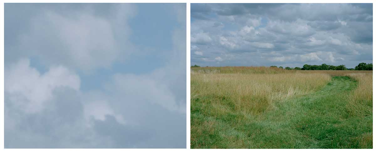 bosworth-diptych-01