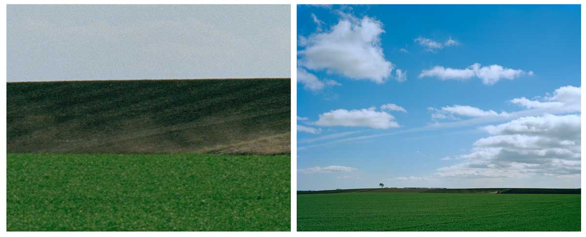 Towton Diptych 5