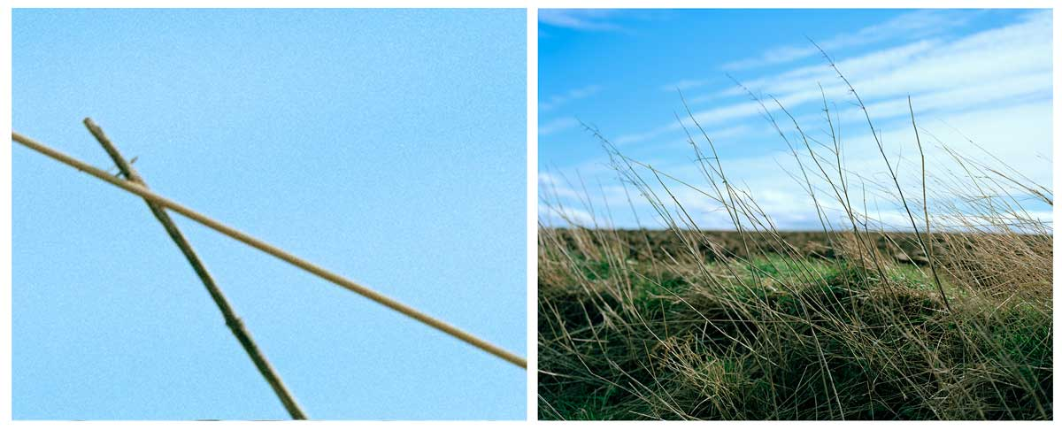 Towton Diptych 2