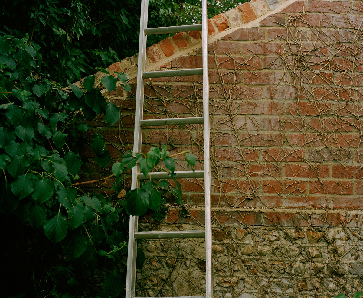 wall-and-ladder